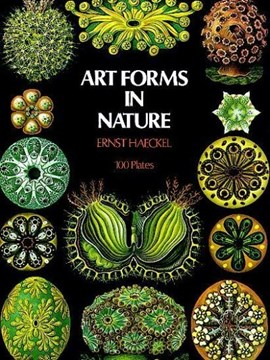 Art forms in nature by Ernst Haeckel