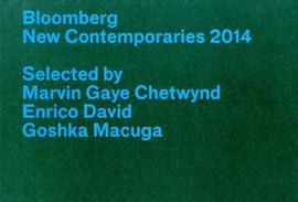 Bloomberg new contemporaries 2014 by Enrico David