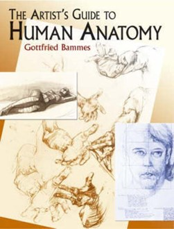 The artist's guide to human anatomy by Gottfried Bammes