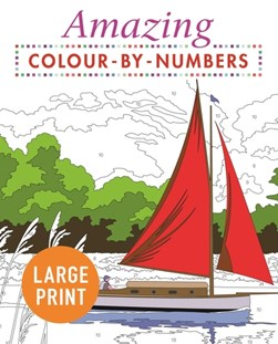 Amazing Colour-by-Numbers Large Print by Arcturus Publishing