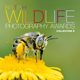 British Wildlife Photography Awards. Collection 6 by AA Publishing
