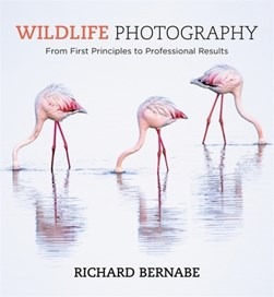 Wildlife photography by Richard A Bernabe