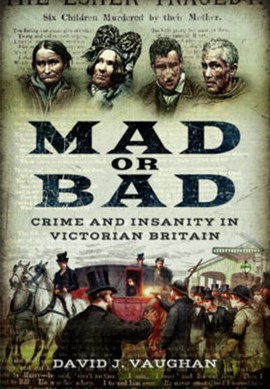 Mad or bad by David J Vaughan
