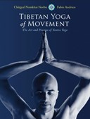 Tibetan yoga of movement