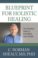 Blueprint For Holsitic Healing