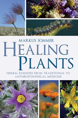 Healing plants by Markus Sommer