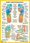 Foot Reflexology -- A2