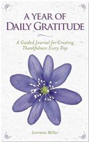A year of daily gratitude