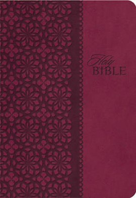 KJV, End-of-Verse Reference Bible, Personal Size, Giant Print, Imitation Leather, Burgundy, Red Let by Thomas Nelson