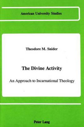 The Divine activity by Theodore M Snider