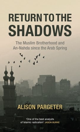 Return to the shadows by Alison Pargeter