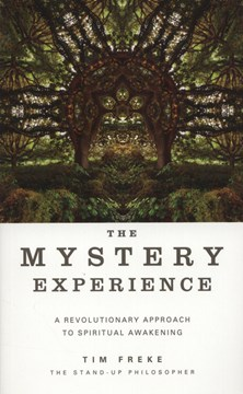 The mystery experience by Timothy Freke