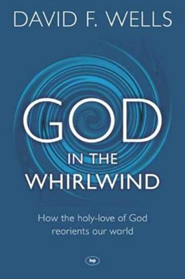 God in the whirlwind by David F. Wells
