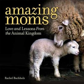 Amazing moms by Rachel Buchholz