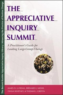The Appreciative Inquiry Summit by LUDEMA