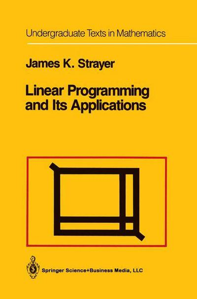 application of linear programming in economics