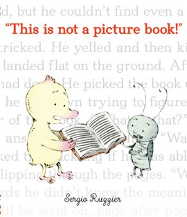 This is not a picture book! by Sergio Ruzzier