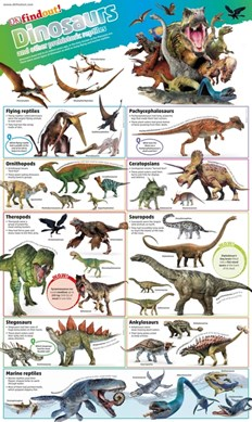 DKfindout! Dinosaurs Poster by DK