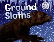 Ground sloths