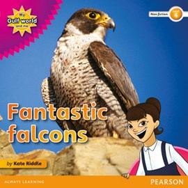 Fantastic falcons by Kate Riddle