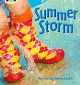 Bug Club Phonics Non-fiction Set 11 Summer Storm