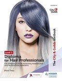 Level 2 diploma for hair professionals for apprenticeships in professional hairdressing and professional barbering