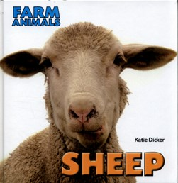Sheep by Katie Dicker