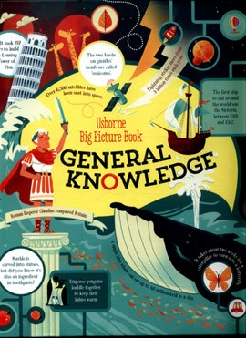Usborne big picture book. General knowledge by James Maclaine