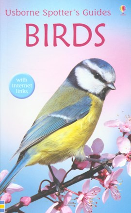 Birds by Peter Holden