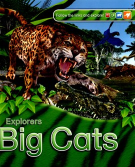 Big cats by Claire Llewellyn