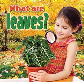 What are leaves? by Kelley MacAulay