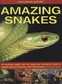 Amazing snakes by Barbara Taylor
