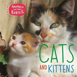 Cats and kittens by Annabelle Lynch