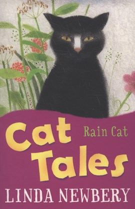 Rain cat by Linda Newbery
