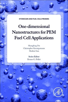 One-dimensional nanostructures for PEM fuel cell applications by Shangfeng Du
