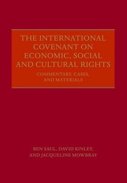 The International Covenant on Economic, Social and Cultural Rights by Ben Saul