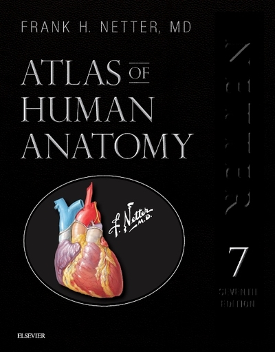Atlas Of Human Anatomy Frank H Netter