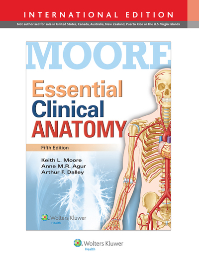 Essential clinical anatomy Dr. Keith L. Moore