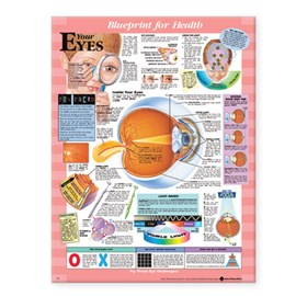Blueprint for Health Your Eyes Chart by Anatomical Chart Company