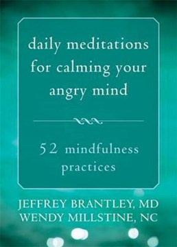 Daily meditations for calming your angry mind by Jeffrey Brantley