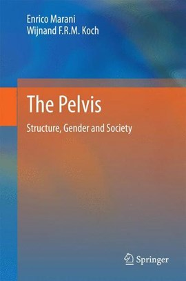 The pelvis by Enrico Marani