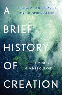 A brief history of creation by Bill Mesler