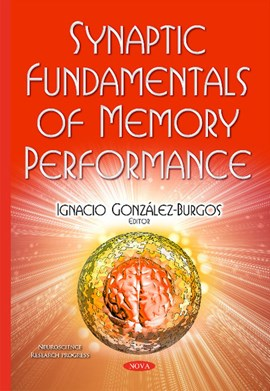 Synaptic fundamentals of memory performance by Ignacio González-Burgos