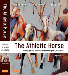 The athletic horse by David R Hodgson