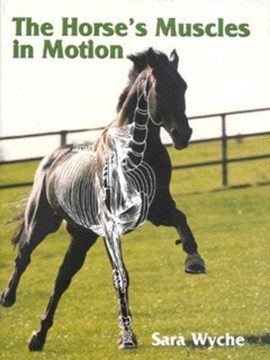 The horse's muscles in motion by Sara Wyche