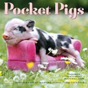 Pocket Pigs Wall Calendar 2019