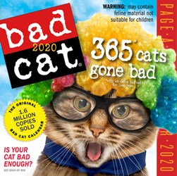 Bad Cat Page-A-Day Calendar 2020 by Workman Calendars