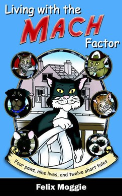 Living with the Mach factor by Felix Moggie