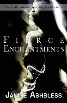 Fierce enchantments by Janine Ashbless