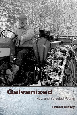 Galvanized by Leland Kinsey